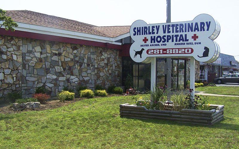 Shirley Veterinary Hospital