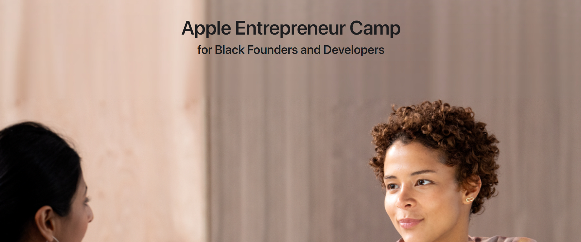 Apple Entrepreneur Camp Black Business Book Black Owned